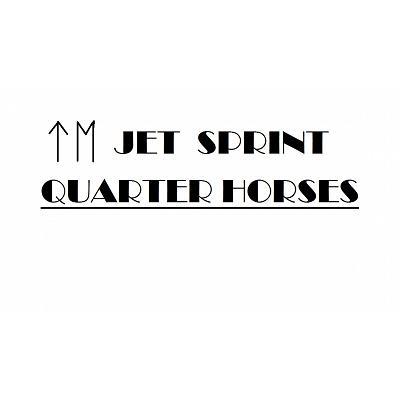 Jet Sprint Quarter Horses