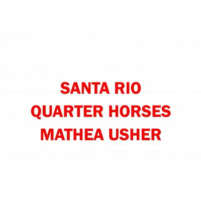 Santa Rio Quarter Horses